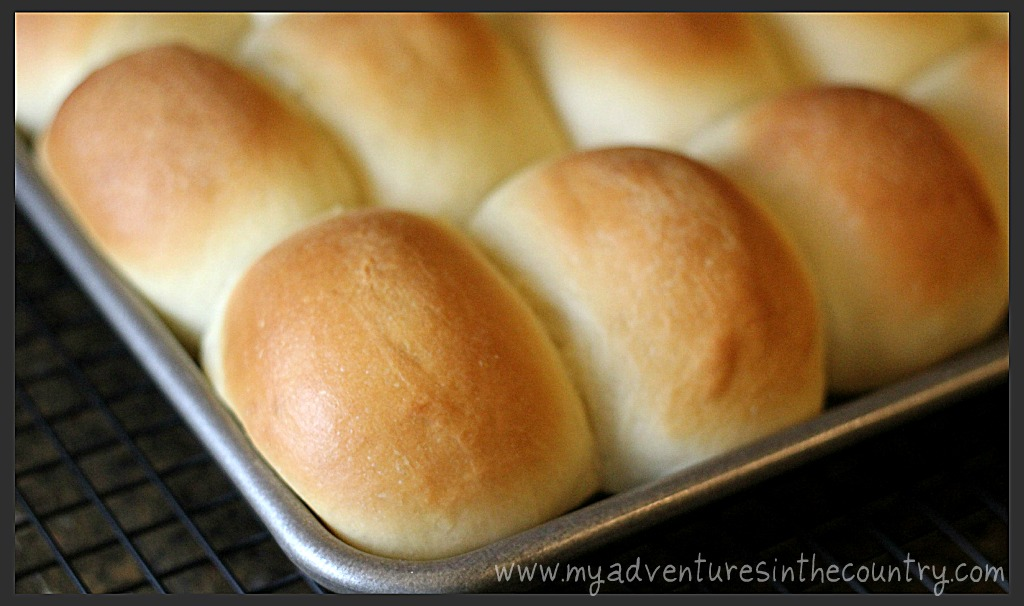 Dinner Rolls Recipe Better Homes Gardens Delicious Country