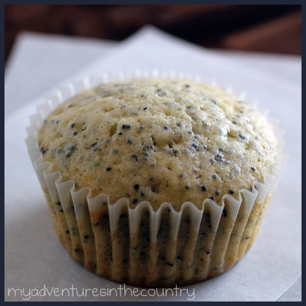 Monday's Mystery Recipe Episode 10: Almond Poppy Seed Muffins