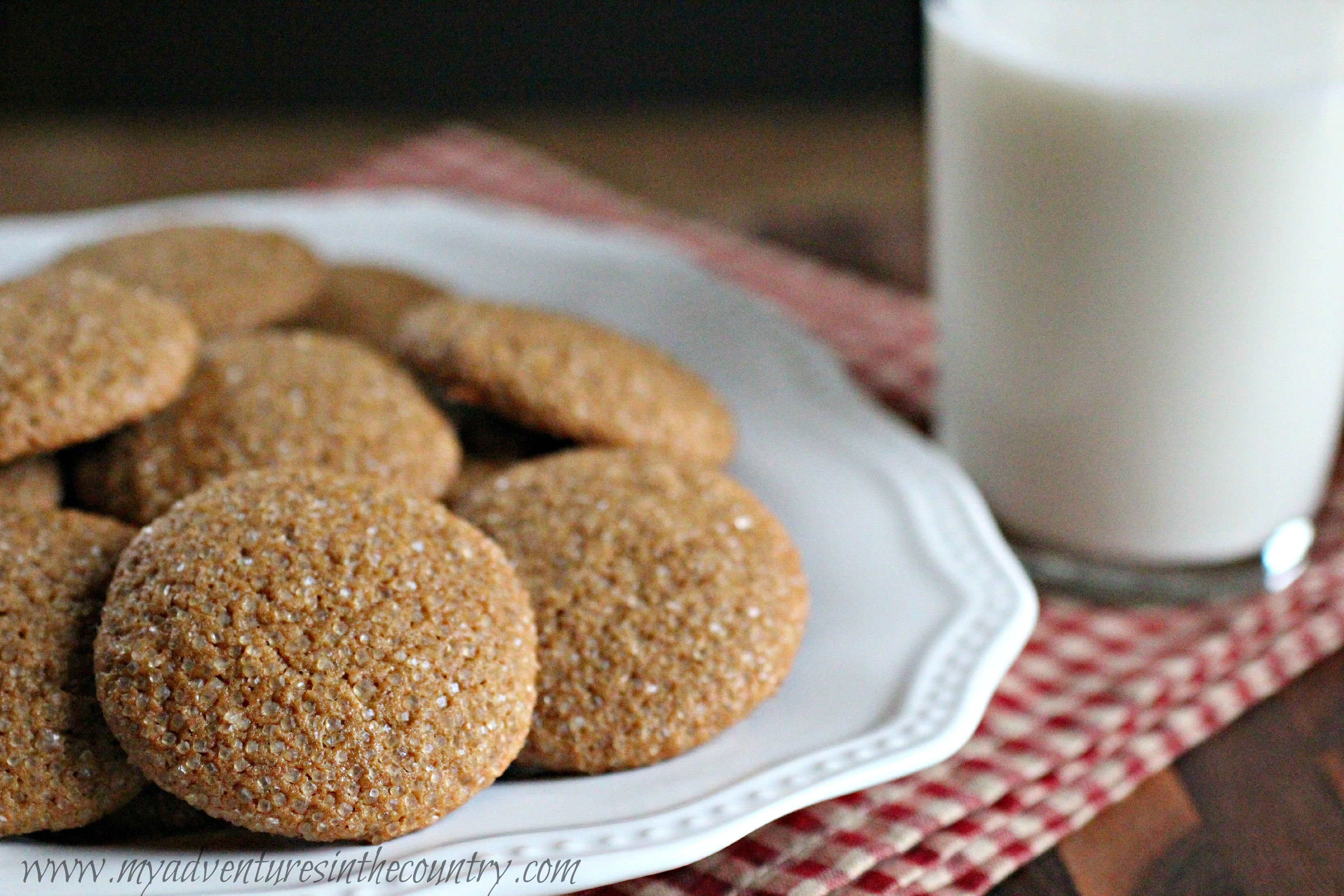 Monday's Mystery Recipe Episode 21: Ice-Capped Gingersnaps (Minus the Ice Cap)